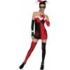 DC Comics Super Villans Harley Quinn  Adult Costume